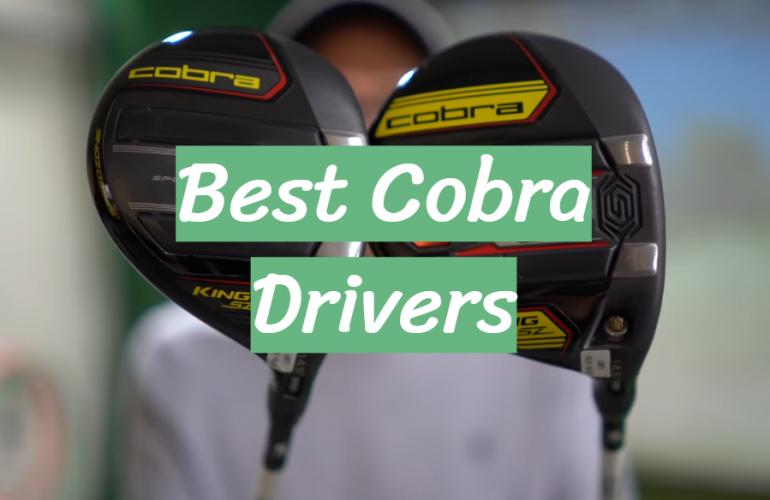 5 Best Cobra Drivers