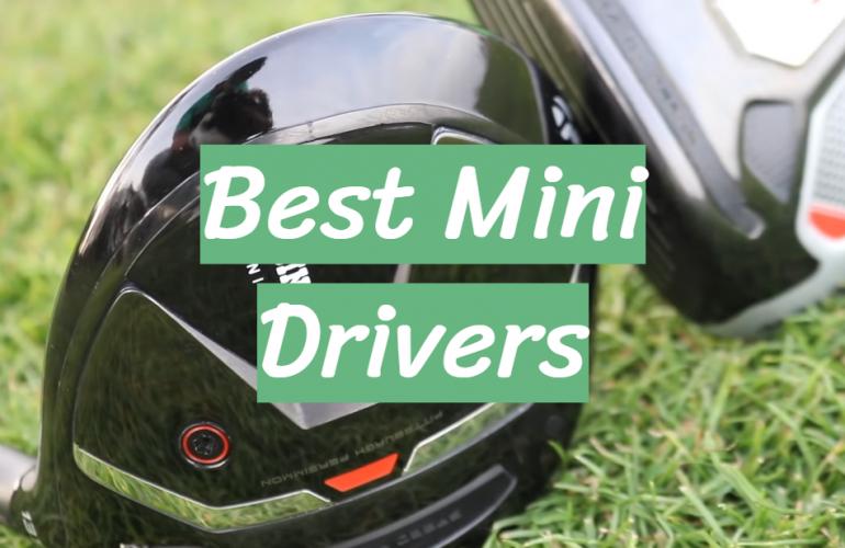 5 Best Mini Drivers